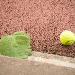 frimley lawn tennis club